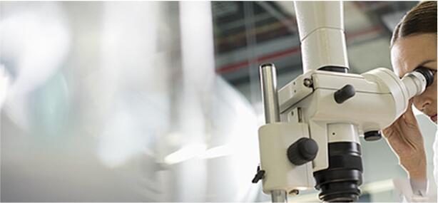 数码显微镜的组件如何协同工作进行检查应用